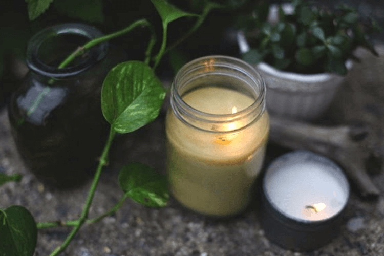 Citronella Candle at picnic